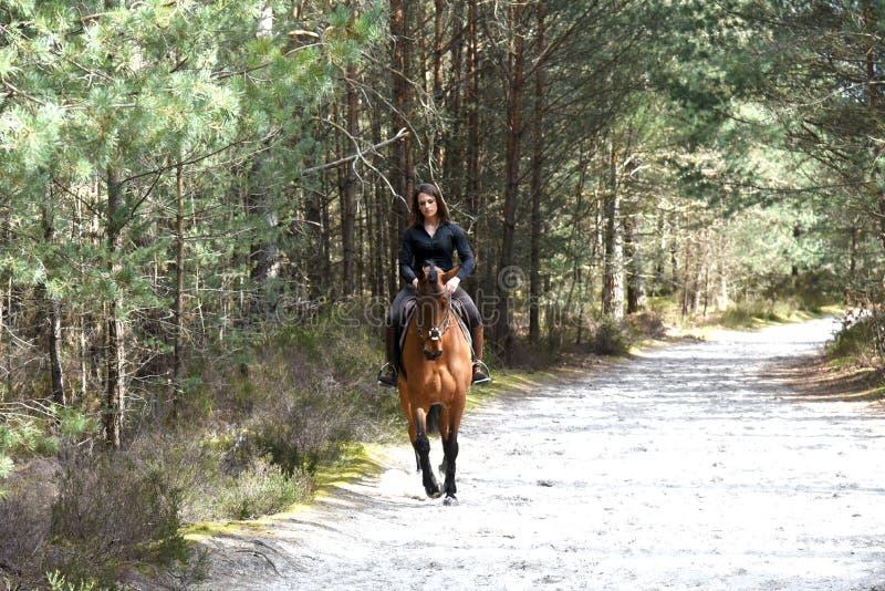 Ung ryttare i skog arkivfoto