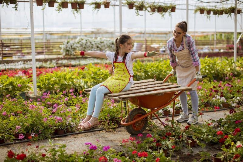 Ung skämtsam blomsterhandlare som tycker om arbete medan en av dem som rider i vagnen i växthuset arkivfoton