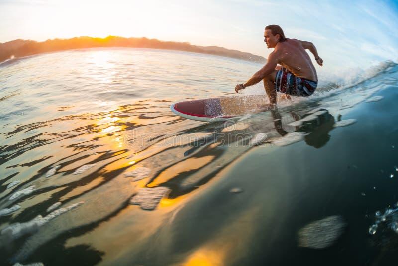 Ung surfare i havet fotografering för bildbyråer