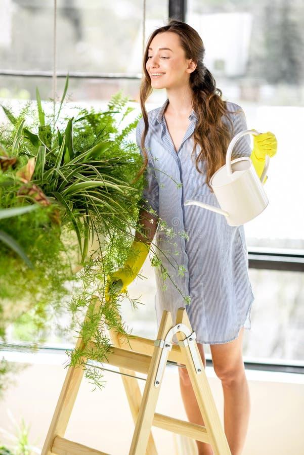 Ung trädgårdsmästare i orangerit med gröna växter royaltyfri foto