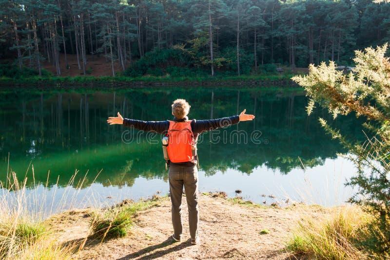 Ung turist- man för tillbaka sikt med lyftt upp till himmel för ryggsäck som armar firar frihet som står nära skogsjön Undersökni royaltyfri bild
