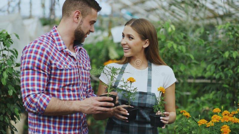 Ung vänlig kvinnablomsterhandlare som talar till kunden och ger honom rådgivning, medan arbeta i trädgårds- mitt royaltyfri bild