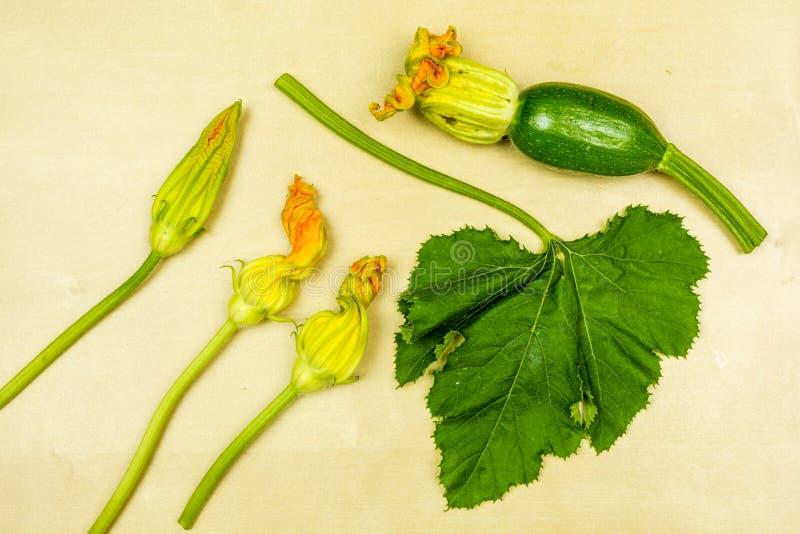 Ung zucchini, blommor och blad som framläggas på ett träbräde ovanför sikt fotografering för bildbyråer
