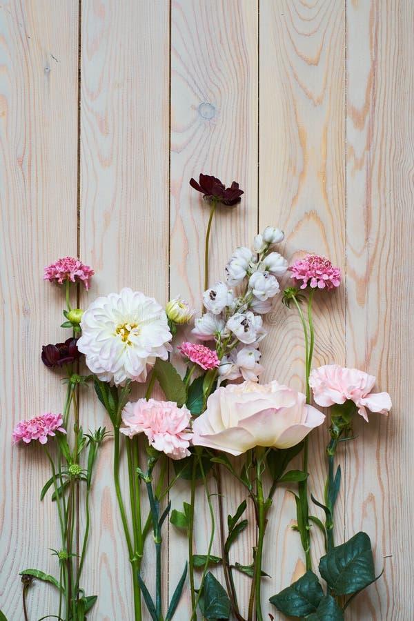 unga blommor på lantligt träbrädebakgrundsslut upp plan lekmanna- bästa sikt fotografering för bildbyråer