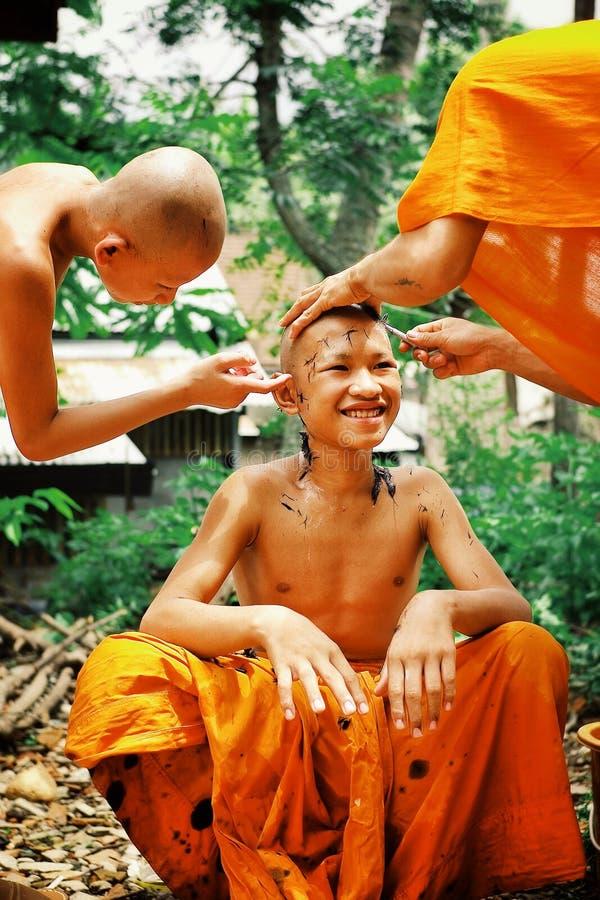 unga buddistiska munkar som rakar varje andra, head i förberedelsen för en helig festivalhändelse royaltyfri fotografi