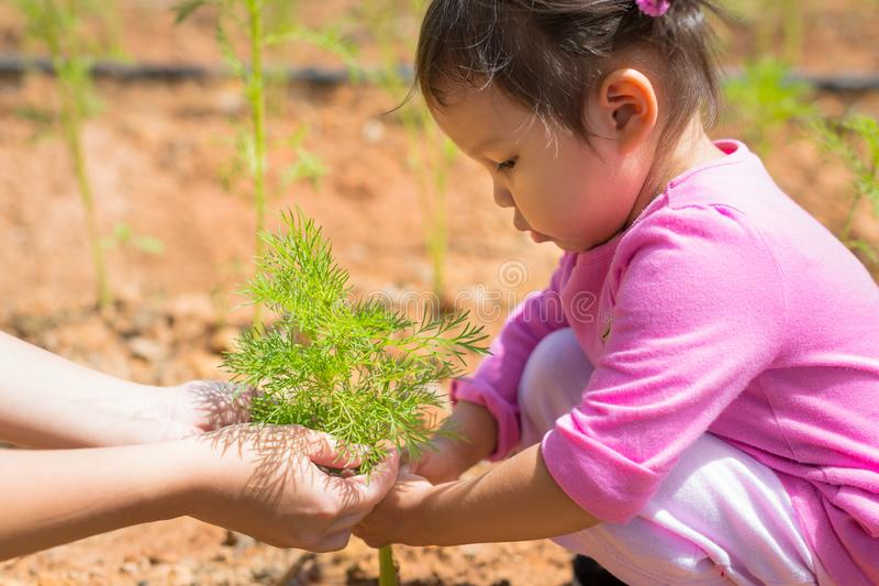 Unga flickan instrueras på hur man att bry sig för växter på en lantgård arkivbild
