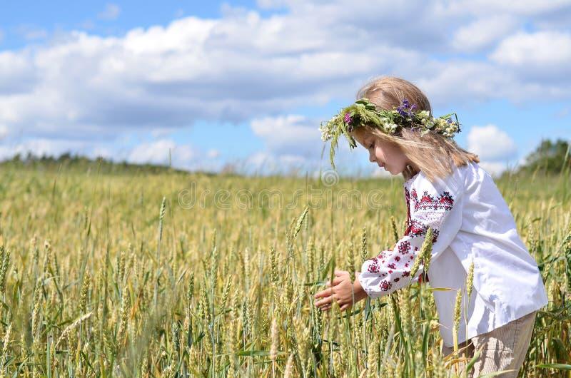Unga flickan med hållande vete för krans gå i ax på fältet royaltyfri fotografi