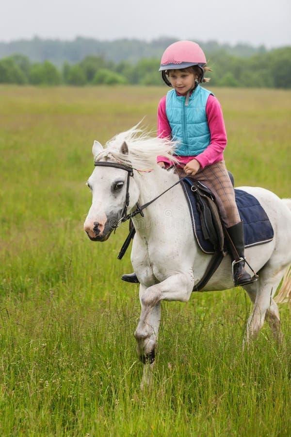 Unga flickan på en häst som galopperar över fältet royaltyfri fotografi