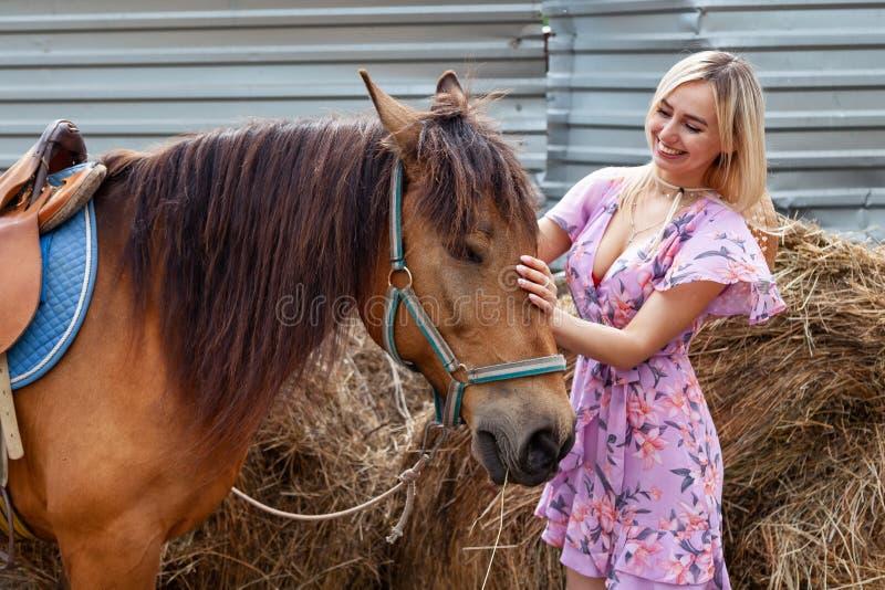 Unga flickan som slår ett huvud av den bruna hästen för, går som äter hö nära höstacken på en klar dag för sommar arkivbild
