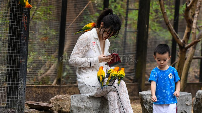 Unga flickor med sm? gula papegojaf?glar royaltyfri fotografi