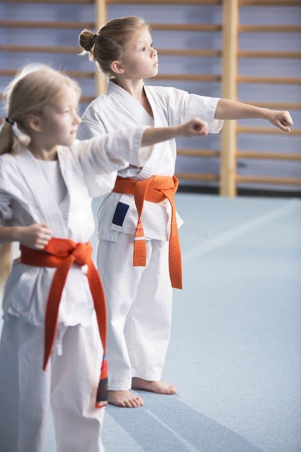 Unga flickor som utbildar karateflyttningar arkivfoto
