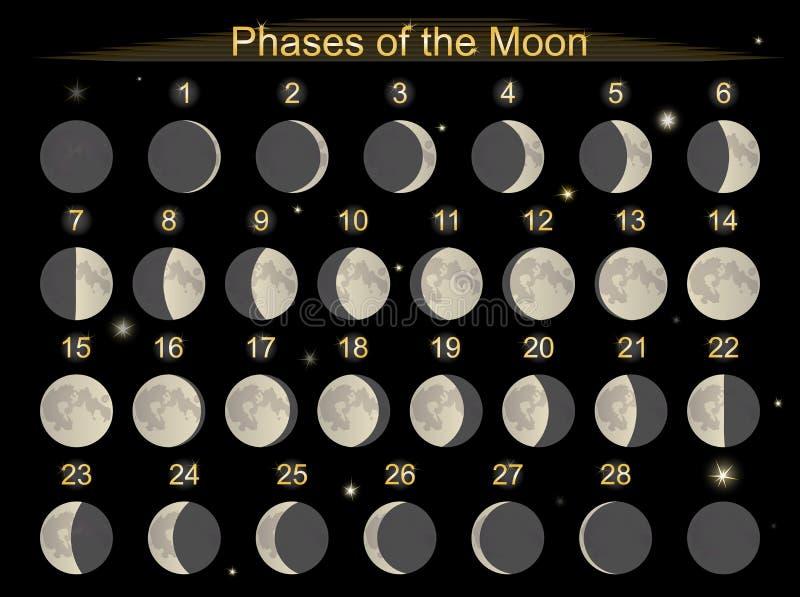 unga gammala faser för fullmåne royaltyfri illustrationer