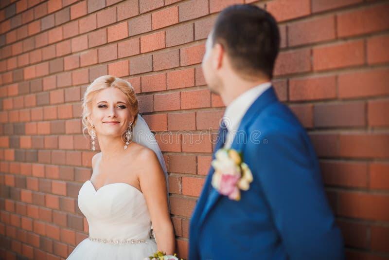Unga härliga brölloppar i parkera royaltyfri fotografi