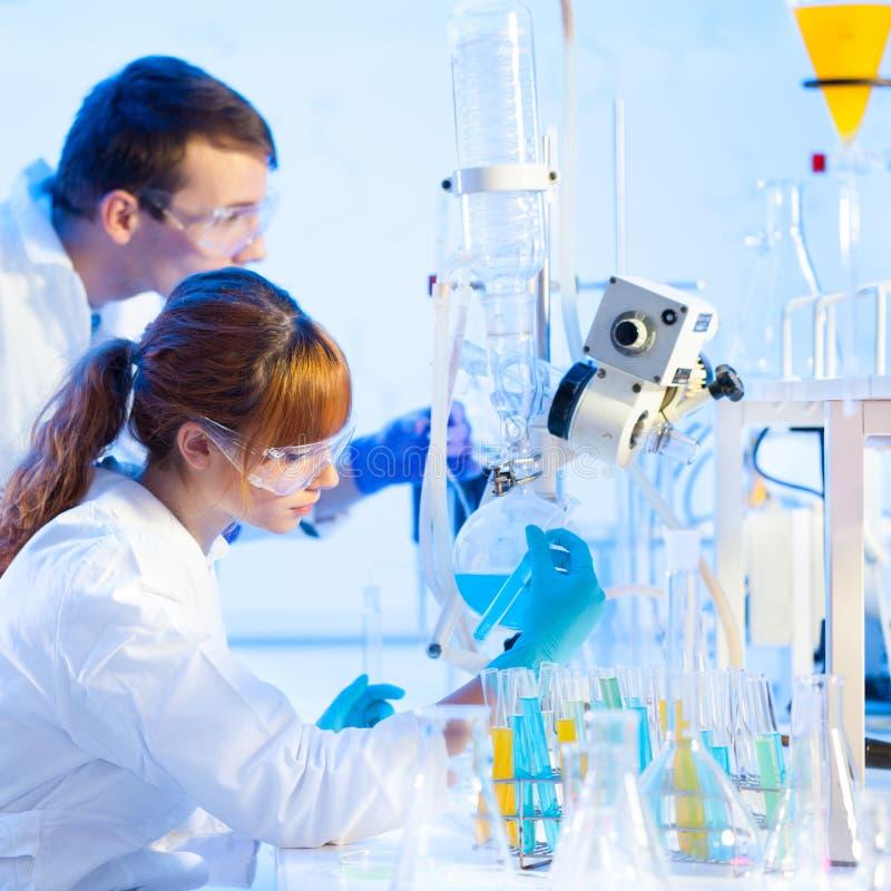 Unga kemister i laboratoriumet. royaltyfri foto