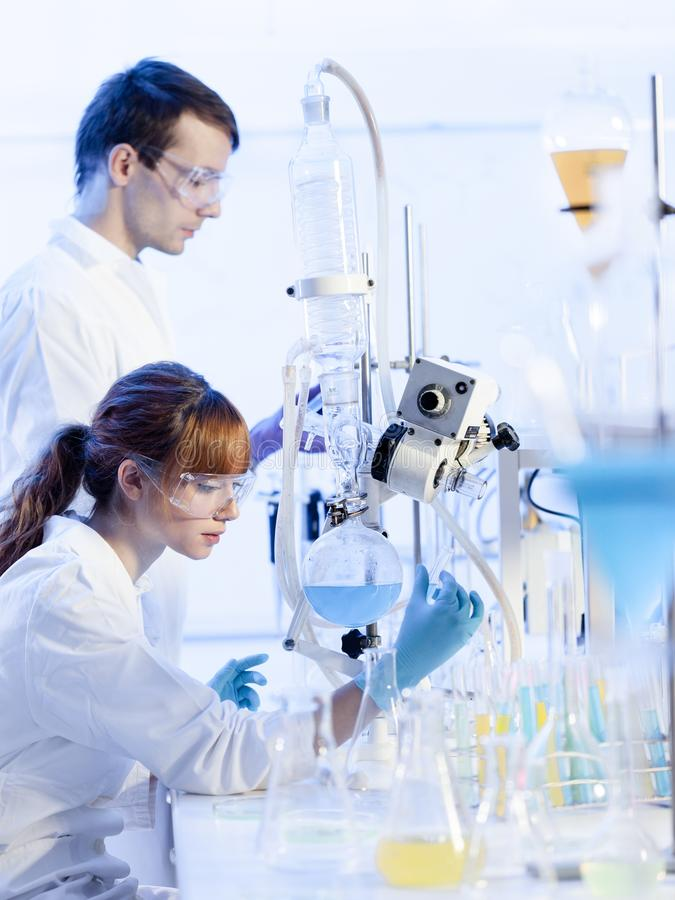 Unga kemister som forskar i vetenskaperna om olika organismers beskaffenhetlaboratorium arkivfoton