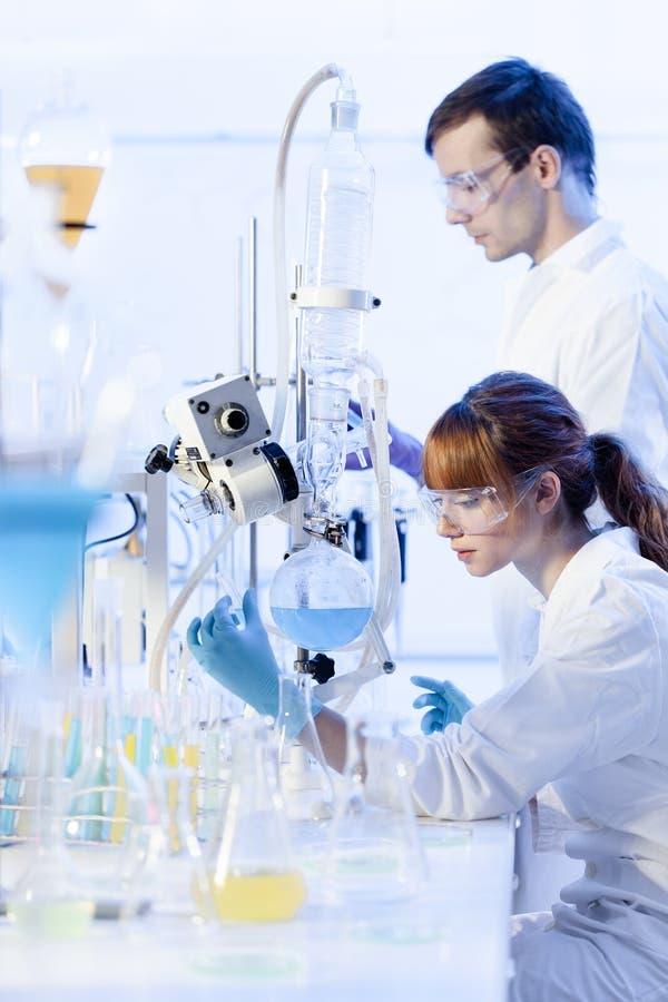 Unga kemister som forskar i vetenskaperna om olika organismers beskaffenhetlaboratorium royaltyfri bild