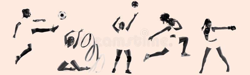 Unga kvinnliga idrottskvinnor, idérik collage fotografering för bildbyråer