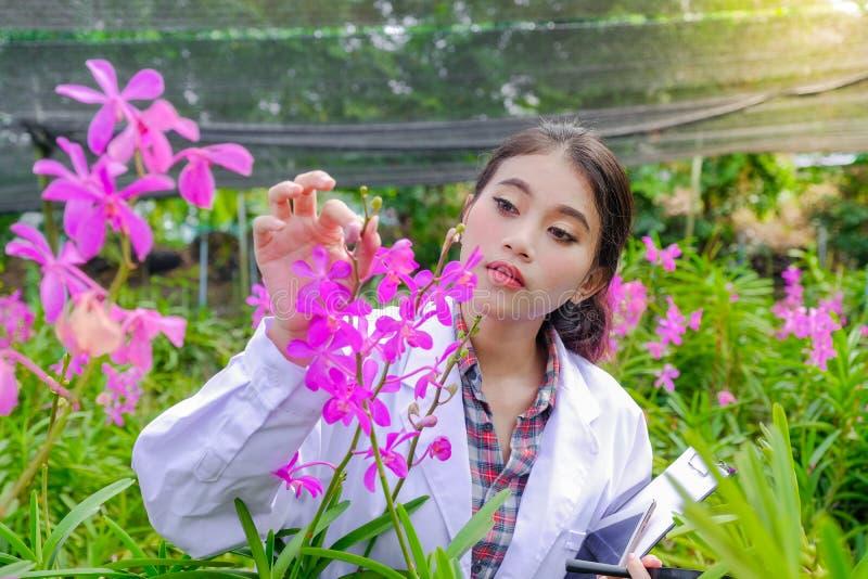 Unga kvinnor för forskare, bärande vita klänningar och att kontrollera orkidér och anteckna ändringar för att förbättra orkidéart royaltyfri fotografi