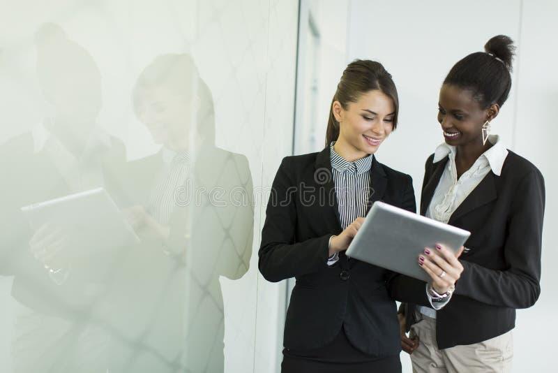 Unga kvinnor i kontoret royaltyfria foton