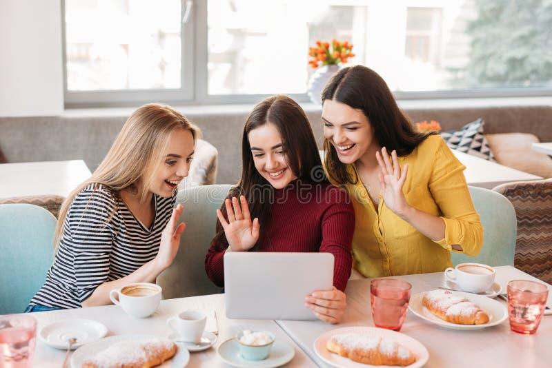 Unga kvinnor som använder den digitala minnestavlan och dricker kaffe i kafé royaltyfri fotografi