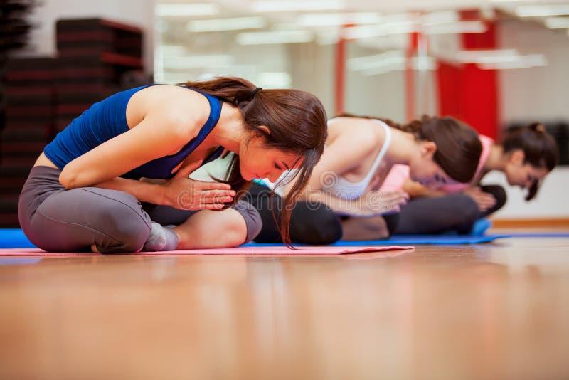 Unga kvinnor som mediterar under yoga royaltyfri foto