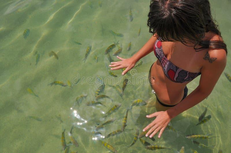 Unga kvinnor som simmar med den tropiska fisken Bahia Boipeba Brasilien arkivbild