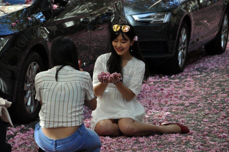 Unga kvinnor som sitter på vägen som täckas med röda rosa körsbärsröda blomningar royaltyfria foton