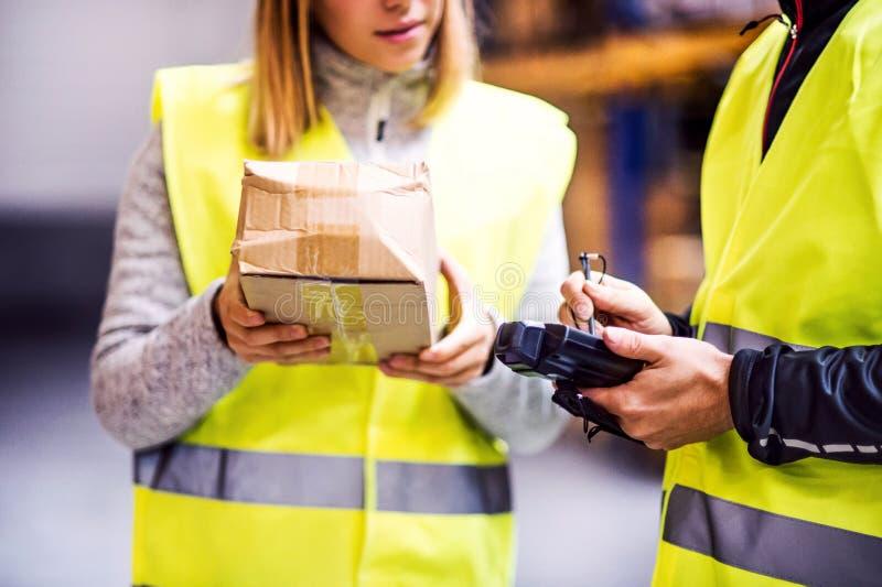 Unga lagerarbetare som tillsammans arbetar arkivfoto