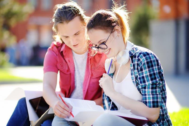 Unga lyckliga studenter med böcker och anmärkningar utomhus arkivbild