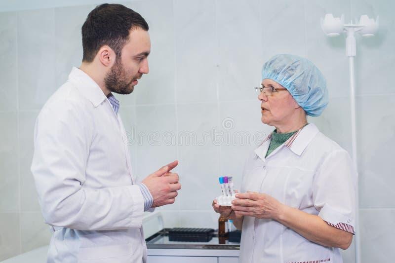 Unga och höga kemister som tillsammans arbetar och ser en provrör i ett kliniskt laboratorium royaltyfri bild