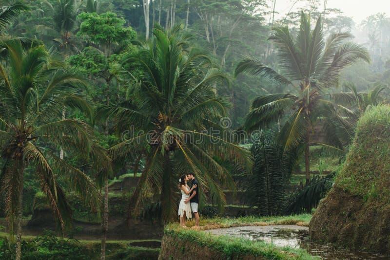 Unga par glada tillsammans med en fantastisk syn på Ubud risterrasser på morgonen royaltyfri foto