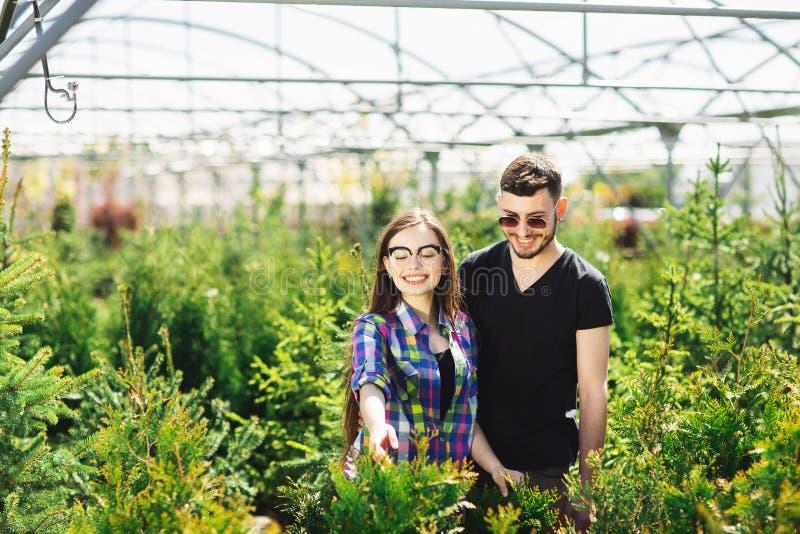 Unga par, man och kvinna som tillsammans står i trädgårdmitten och att välja växter för att göra grön huset arkivbild