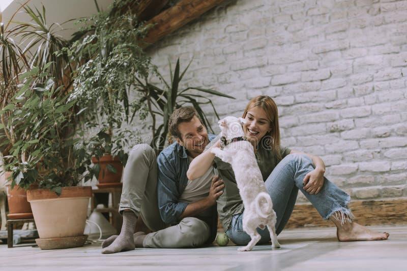Unga par som sitter p? det lantliga vardagsrumgolvet och spelar med hunden royaltyfria foton