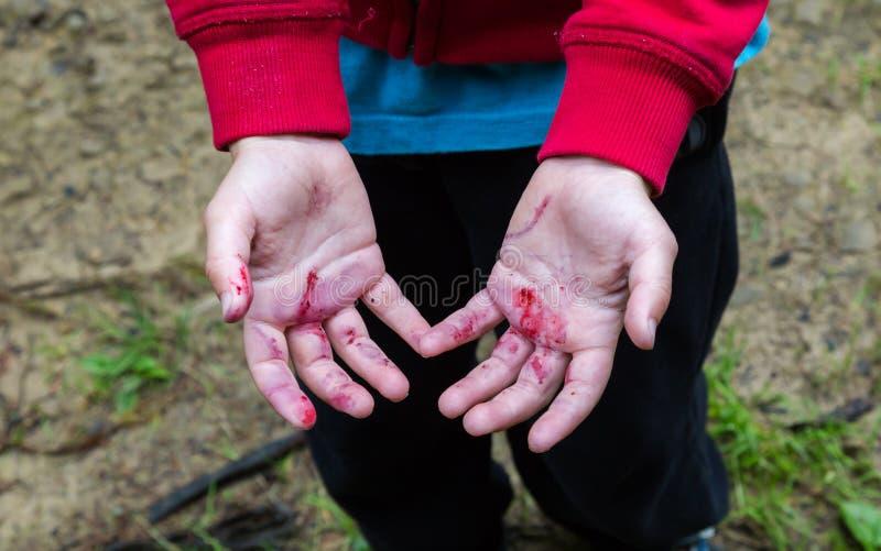 Unga pojkar smutsar ner från björnbärfruktsafthänder fotografering för bildbyråer
