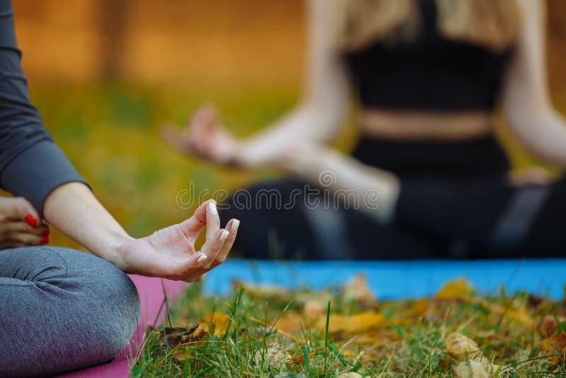 Unga praktiker som gör yoga, övar parkerar in Kvinnor mediterar utomhus- i framdel av den härliga höstnaturen Händer royaltyfri foto