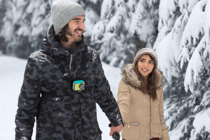 Unga romantiska par som går i snö Forest Outdoor Mix Race, man och kvinnainnehavhänder arkivbild