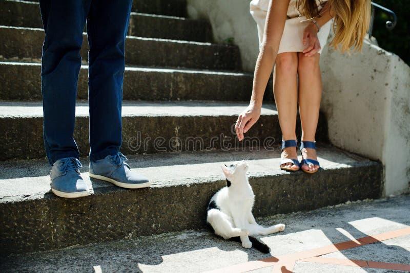 Unga romantiska par som spelar med en katt i Positano, Italien royaltyfri foto