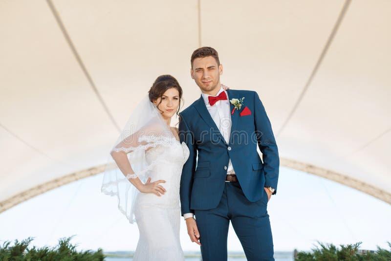 Unga stående brölloppar utomhus royaltyfri fotografi