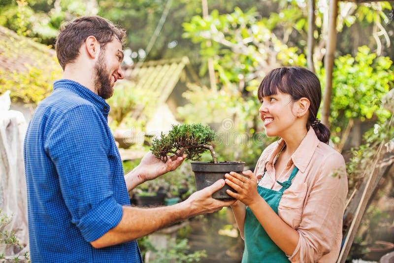 Unga trädgårdsmästare med bonsai royaltyfria bilder