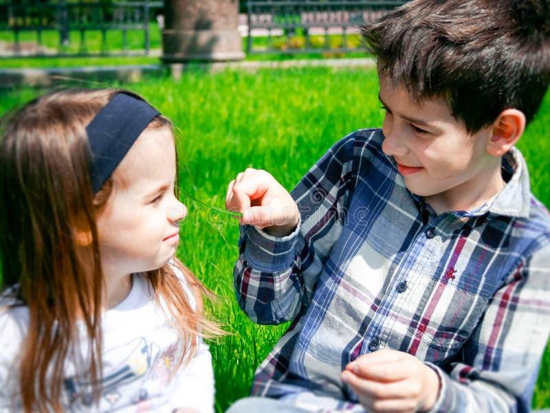 Unga ungar på gräset royaltyfria bilder