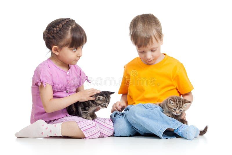 Ungar flicka och pojkesammanträde på golvet som spelar med isolerade små kattungar - royaltyfria bilder