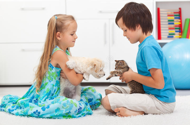 Ungar med deras husdjur - hund och katt arkivfoto