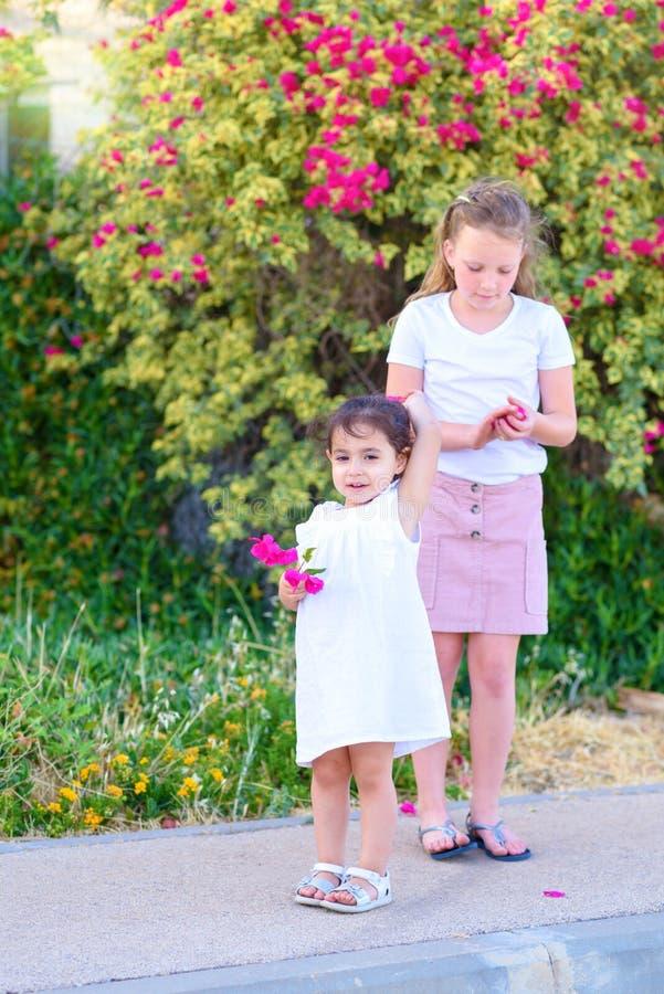 Ungar som har utomhus- gyckel royaltyfri fotografi