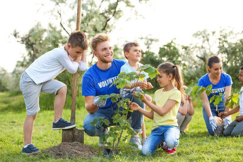 Ungar som planterar träd med volontärer arkivbild