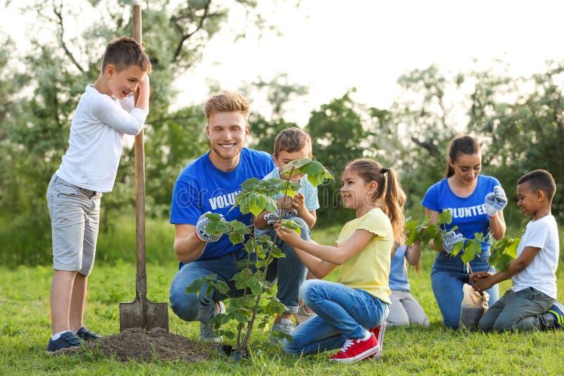 Ungar som planterar träd med volontärer royaltyfri foto