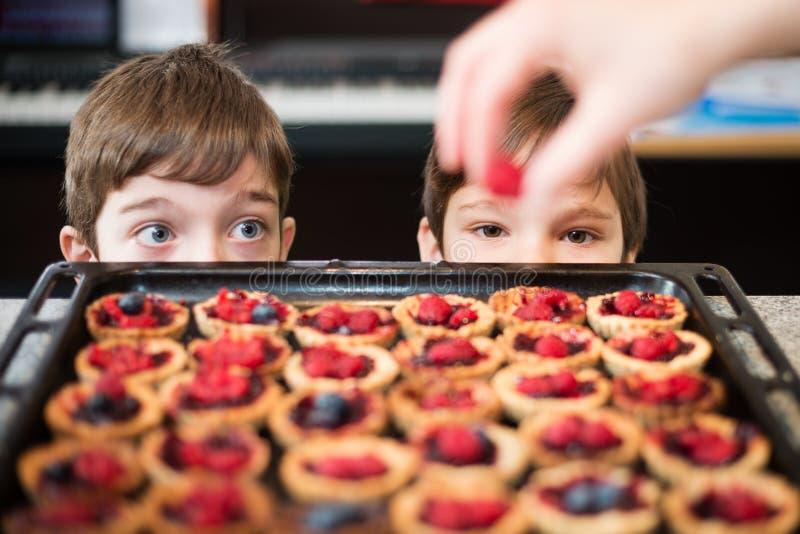 Ungar som ser förberedelsen av muffin fotografering för bildbyråer
