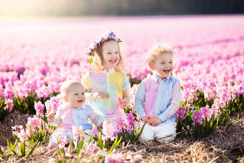 Ungar som spelar i blommafält arkivfoto