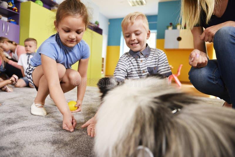 Ungar som spelar med hunden i förträningen royaltyfria bilder