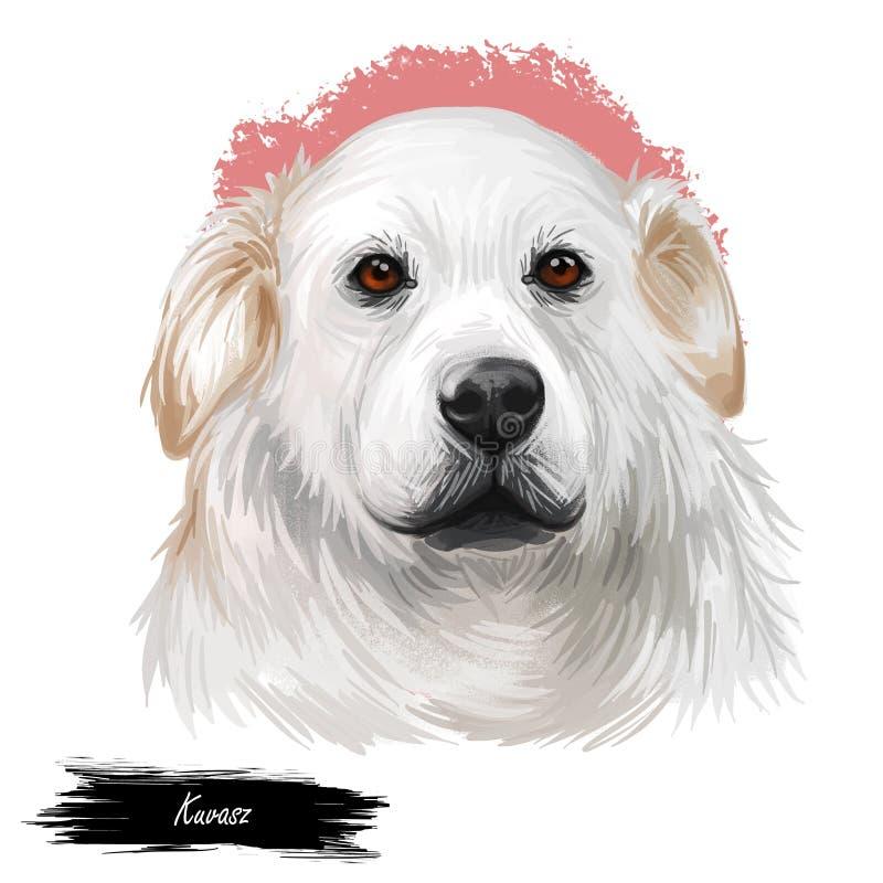 Ungarische alte Zucht Kuvasz Viehbestandhundeder digitalen Kunstillustration Haustier- und Schutzhund, gestammt aus Ungarn wie stock abbildung