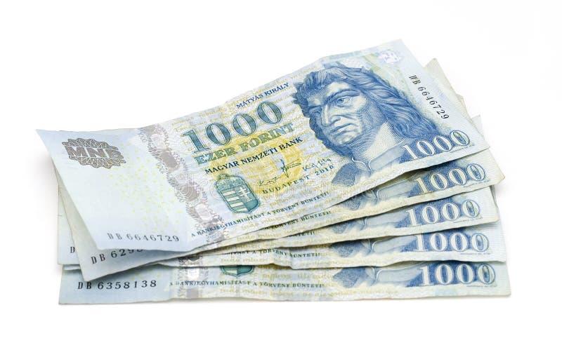 Ungarische Forint-Banknoten stockfotografie